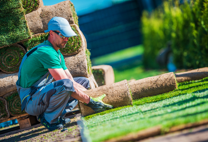 3 Services a Landscaper Provides
